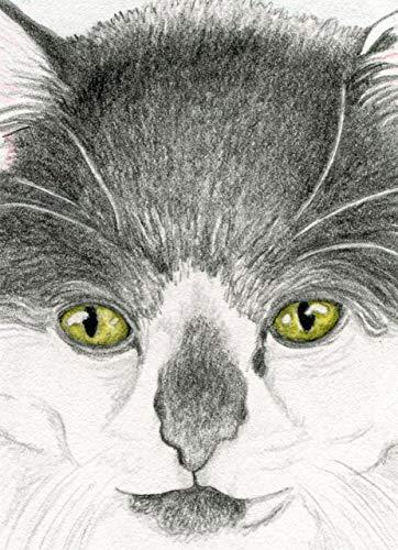 ACEO ATC-free shipping- Tuxedo Cat Drawing Original Art-Carla Smale