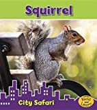 Squirrel, Isabel Thomas, 1432988166
