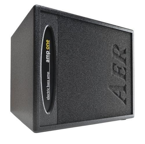 AER Amp-One 200 Watt Combo Bass Amplifier