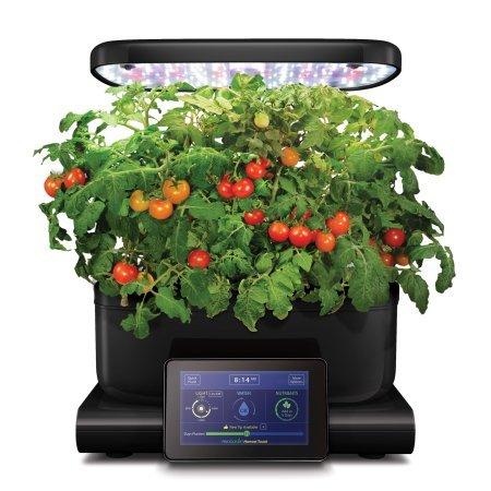 AeroGarden Harvest Touch, Black with Gourmet Herbs Seed Pod Kit (Black)