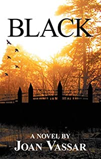 Black by Joan Vassar ebook deal