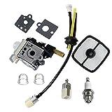 Best Fuel Maintenance For Echos - Janrui Carburetor with Fuel Maintenance Kit Spark Plug Review