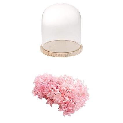 KESOTO Florero de Cristal Cúpula con Base Madera, Botella con Flor Seca Ornamento de Mesa