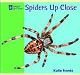 Spiders up Close, Katie Franks, 1404241388