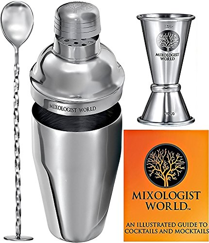 Cocktail Shaker Bar Tools Set – Must-Have Professional Bartender Accessories Kit for Home: 24 oz Stainless Steel Martini/Drink Mixer with Built-in Strainer, Double Jigger, Mixing Spoon & Recipes Guide Stainless Steel Martini Cocktail Shaker