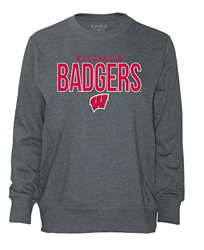 NCAA Wisconsin Badgers Women's Long Sleeve French Terry Polo Shirt, Dark Heather, Small -