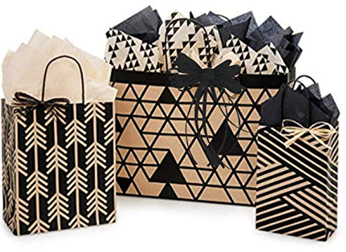 Gift Bags, Assorted Sizes, Bundled with Coordinating Tissue Paper and Raffia Ribbon (Kinetic Ink)