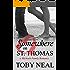 Somewhere on St. Thomas (Michaels Family Romance Book 1)