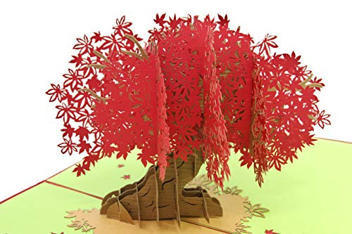 (PopLife Red Japanese Maple Tree 3D Pop Up Mothers Day Card - Anniversary Pop Up Happy Birthday Card, Congratulations - Gift for Her - Folds Flat - for Mother, for)