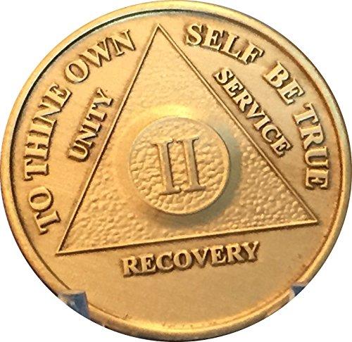 AA Anniversary Medallion Any Year 1-65 Chip Bronze Raised Center ()
