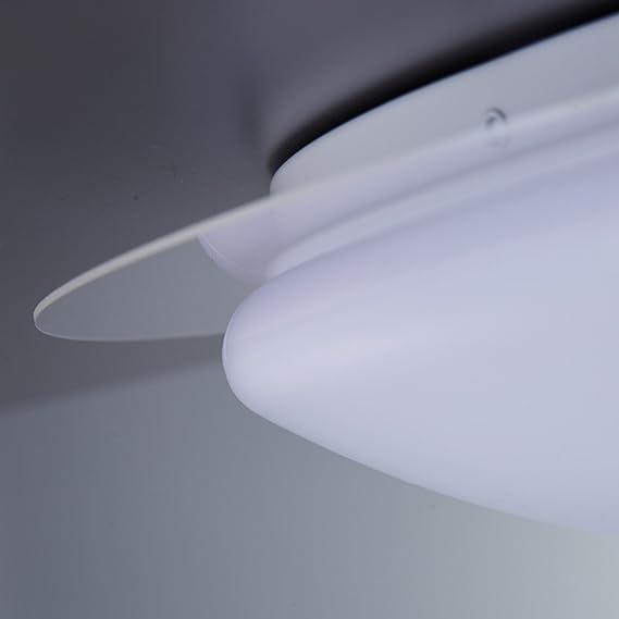 LED Deckenleuchte Dimmbar 16 Farben Inkl. LED-Platine 230V IP44 LED ...