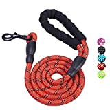 Bolux 5ft Padded Handle Rope Leash with Highly Reflective Threads and Heavy Duty Training Durable Nylon Dog Leash for Medium Large Dogs (Red)