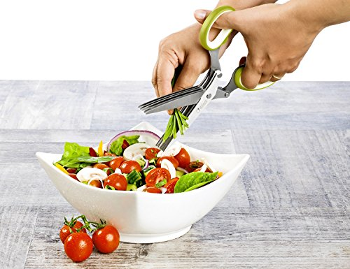 Premium herb scissors set by chefast perfect kitchen for Perfect kitchen cleaner
