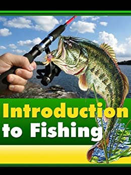 how to fish for beginners