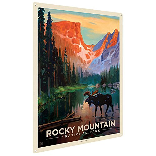 Anderson Design Group Rocky Mountain National Park: Moose in the Morning 9'x12' Metal Art Print, Home Decor for Office, Nursery, Patio, Garage, Cabin, or Vacation Home