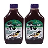 Songbird Essentials Bird Berry Jelly 20 Oz (2 Pack)