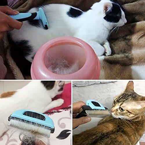 Brosse pour Toilettage de Chiens et Chats, Arekeke Outil deshedding Outil de toilettage Peigne râteau de démêlage cheveux pour d'animaux (bleu)