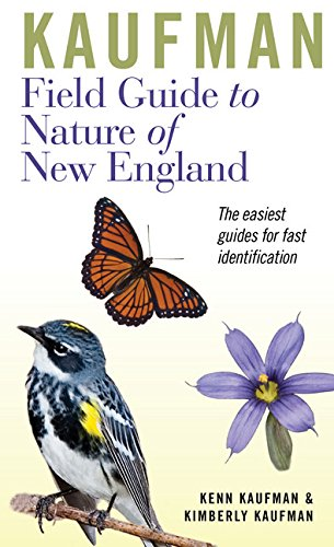 Kaufman Field Guide to Nature of New England (Kaufman Field Guides) (Birds New England)