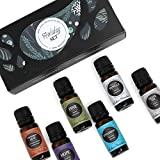 Edens Garden HOLIDAY Essential Oil 100% Pure Therapeutic Grade Aromatherapy Sampler Set- 6/10 ml of Cinnamon Leaf, Hope, Pine, Silver Fir, Spearmint and Vanilla
