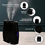 Everlasting Comfort Ultrasonic Humidifier (6L) -Essential Oil Tray, High Mist Output, Adjustable Knob and 360 Deg. Nozzles. Ultra Quiet, Auto Shut Off, Night Light, Large Capacity Vaporizer