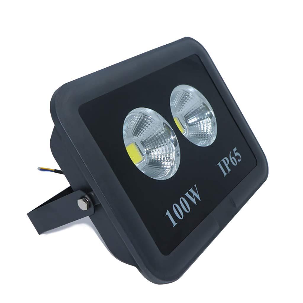 Faretto a LED da esterno con riflettore impermeabile da 100W (colore   3000K-1Piece)