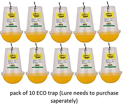 Chipku ECO Trap Economy Pack Pack of 10 Traps Without Lure