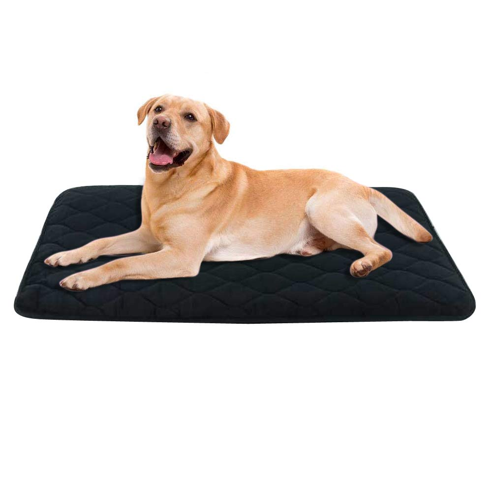 B&G Dog Mat Washable and Easy Clean, Anti-Slip Matress Resistance & Durable Velvet Dog Bed, Dog Pad-Black (25.5 inch by 35 inch)