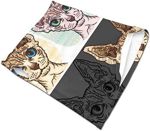 フェイスカバー Uvカット ネックガード 冷感 夏用 日焼け防止 飛沫防止 耳かけタイプ レディース メンズ Cute Sphinx Cat