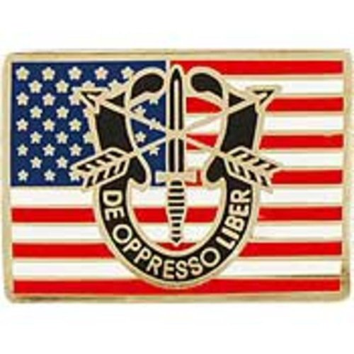 American Special Forces Flag Pin 1