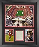 "Legends Never Die Raymond James Stadium - Tampa Bay Buccaneers Framed Photo Collage, 16"" x 20"""