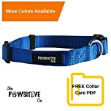#5: Dog Collar, Buy a Collar. Feed a Dog. The Pawsitive Co Durable Nylon Puppy and Dog Collar with Chrome Plated D Ring - Medium - Blue