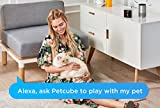 Petcube-Play-Interactive-Wi-Fi-Pet-Camera-HD-1080p-Video-2-Way-Audio-Night-Vision-and-Laser-Toy-Compatible-with-Amazon-Alexa-As-seen-on-Ellen