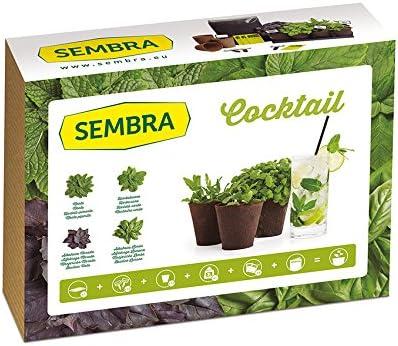 Sembra Big Kit Cultivo, 25.5x33.5x9 cm: Amazon.es: Jardín