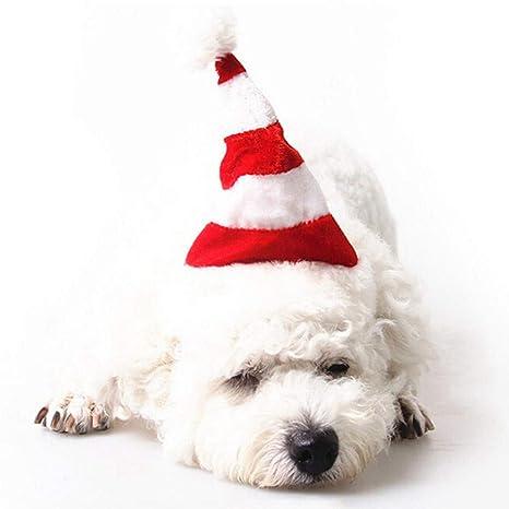 Factorys Sombrero de Papá Noel para Perros Fiesta de ...