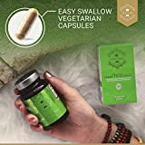 Organic Green Tea Extract Capsules – USDA Organic