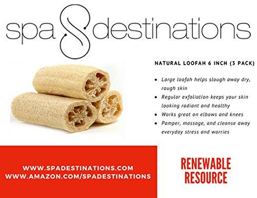 Amazon.com: Natural Loofah Exfoliante Esponja de baño por ...