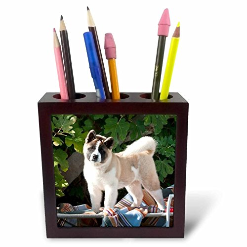 Akita Porcelain - 3dRose ph_88763_1 Akita Dog with Blanket and Toy - US05 ZMU0038 - Zandria Muench Beraldo - Tile Pen Holder, 5-Inch