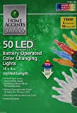 Home Accents Holiday Party 50 LED Battery Operated Color Changing Lights with Timer