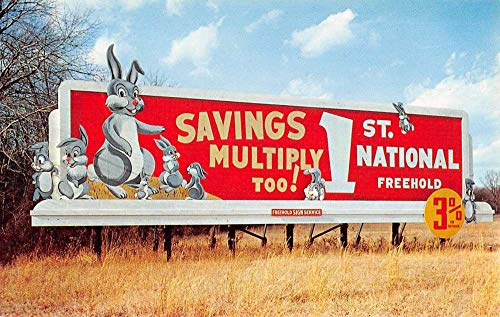 - Freehold New Jersey National Bank Sign Rabbits Vintage Postcard K7876331