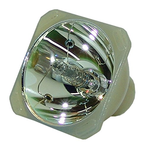 Original Philips Projector Lamp Replacement for Digital Projection iVision 20-1080P-XB (Bulb Only)