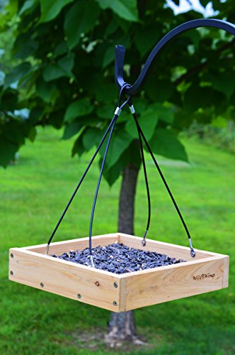 Buy time bird feeder