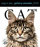 Cat Page-A-Day Gallery Desk Calendar 2019 [6.25'' x 7.25'' Inches]