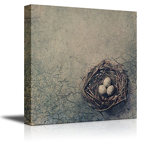 wall26 - Canvas Prints Wall Art - Bird Nest with Eggs on Dry Desert Ground. | Modern Wall Decor/Home Decoration Stretched Gallery Canvas Wrap Giclee Print. Ready to Hang - 16