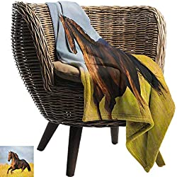 warmfamily Blanket Sheets Horses Friesian Horse with Mane Gallops in Meadow Equestrian Mystery Vitality Horse Traveling,Hiking,Camping,Full Queen,TV,Cabin60 Wx60 L