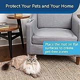 PetSafe ScatMat Indoor Pet Training Mat for Dogs