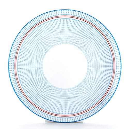 Blue Light Porcelain (Sunbright 10-1/4 Inch Porcelain Plates Set for Dinner, Pasta,Salad - 6 Pack, FDA Approved- Light Blue)