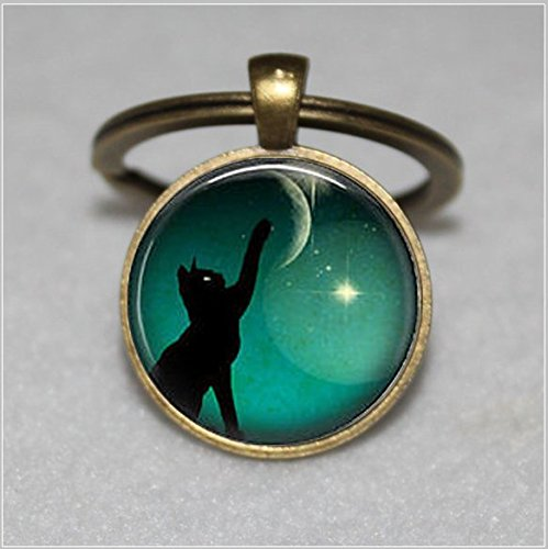 Black cat Keychain ,moon photo Keychain, art black cat - Key Moon