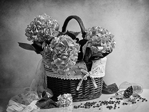 - Wall Art Prints - Hydrangea Shopping Coffee Sprinkle Scarf - Fabric Cloth Rolled Wall Poster Print - Size:32x24 Inches Black and White