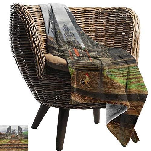 (AndyTours Luxury Flannel Fleece Blanket,Balinese,Traditional Balinese Architecture Gate Temple Tourist Attractions Asian Monument, Brown Green,All Season Light Weight Living Room/Bedroom 50