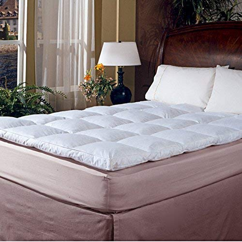 233 Thread Count Cotton Cover Featherbed, Queen